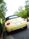 beetle_cabrio