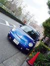 blue_beet