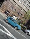 lupo_costa_street