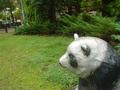 panda_rest