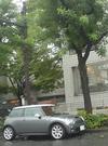 rain_b_mini