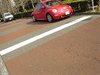 red_beetle